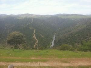 Río Viar - Cola del embalse Melonares