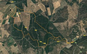 recorrido 25km pinares